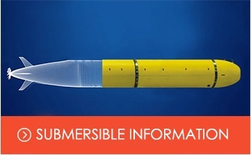 Submersible Componenet  Information