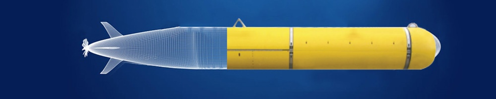 Submersible Components